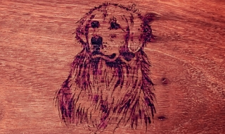 Example of Pet Pyrography Customisation
